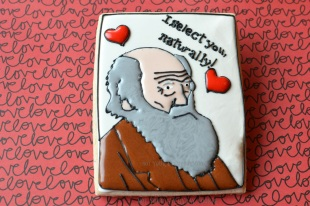 Darwin Valentine's Day Cookie - Not Your Everyday Cookie